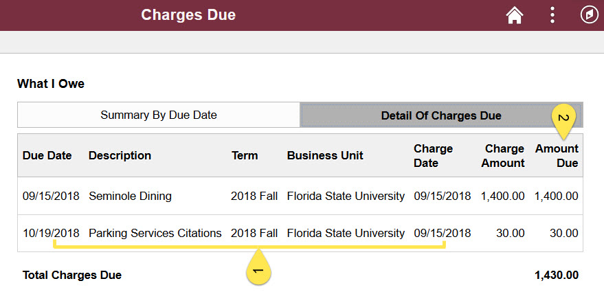 Charges Due Detail.jpg
